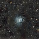 Iris Nebula NGC7023,                                Francesco
