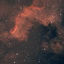 Cygnus Wall,                                Tommy Lease
