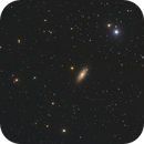 NGC2841,                                Wilson Yam