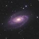 M81 Bodes Galaxy HaRGB,                                Ronny May