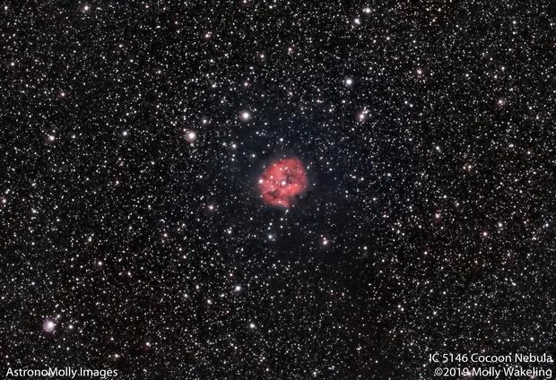 IC 5146 Cocoon Nebula #3,                                Molly Wakeling