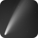 Comet Neowise in Greyscale,                                Jeff Ball