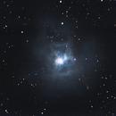 Iris Nebula,                                jhanson