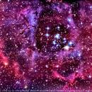 Rosette Nebula (NGC 2237),                                Lopes Maicon