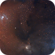 Colorful Rho Ophiuchi,                                Ron