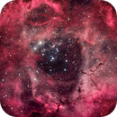 NGC2244 - The Rosette Nebula,                                Álmos Balási