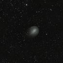 Comet Holmes,                                Lauri Kangas