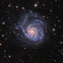 M101 with OS RiLA in colors,                                Giovanni Paglioli