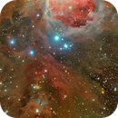 Orion Nebula complex (M42, NGC 1999),                                Giuseppe Donatiello