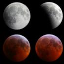Lunar eclipse, 15-minute intervals,                                Frank Kane