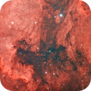 NGC7000,                                Frédéric Tapissier