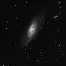 [ M106 ] BW,                                agostinognasso