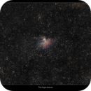 The Eagle Nebula,                                William Maxwell
