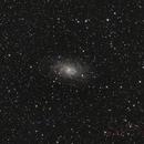 M33,                                Stefan T