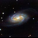 NGC 2903,                                Paolo Demaria