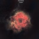 Rosette Nebula - STARLESS,                                Chris Troiani