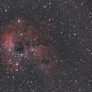 IC 410,                                manudu74