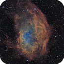 Sh2-261 Lower's Nebula in modified SHO,                                Greg Nelson