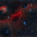 Nebulosa gaviota HaRGB (Seagull nebula HaRGB) IC 2177,                                Alfredo Beltrán