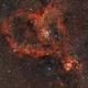 Heart Nebula - IC 1805,                                David Augros