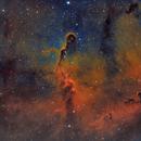 Elephant's Trunk Nebula (IC1396) in SHO Palette with RGB Stars,                                Johnny Qiu
