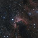 Cave Nebula SH2-155,                                Eric Watson