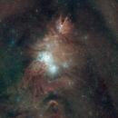 Cone Nebula (NGC 2264),                                Douglas Thomas