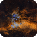 Cygnus Obscura,                                urmymuse