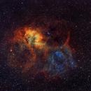 Sh2-132 - The Lion Nebula in Cepheus (SHO),                                CrestwoodSky