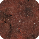 IC 1396,                                alexhollywood