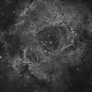 Rossette Nebula,                                Maicon Germiniani