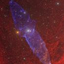The Squid Nebula - OU4,                                Eric Coles (coles44)