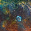 Nébuleuse du croissant NGC6888 et de la bulle de savon en SHO,                                Séb GOZE