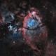 IC 1795 - The Fishhead Nebula (SHO),                                Frank Breslawski