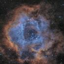 Sh2-275, Rosette Nebula (SHO),                                Maurice Toet