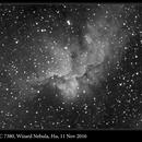 NGC 7380, Wizard Nebula, Hα, 11 Nov 2016,                                David Dearden