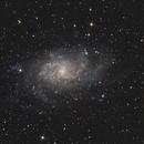 M33 Galaxy,                                Jakub Bandrowski