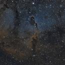 IC1396 - Elephant's Trunk Nebula,                                Bernd Flachsbart