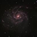 Messier 101, the Pinwheel Galaxy,                                Evelyn Decker