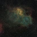 Sh2-132 - The Lion Nebula - and the Abell 79 Planetary Nebula,                                Timothy Martin & Nic Patridge