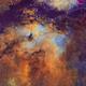 IC1318 - Hubble Palette,                                Eric Coles (coles44)