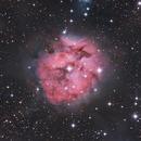 IC 5146 • Cocoon nebula,                                Mikael De Ketelaere