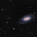 NGC2903,                                avolight
