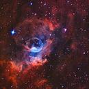 NGC 7635 The Bubble Nebula,                                Greg Nelson