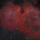The Soul nebula in Cassiopeia,                                Francesco Meschia