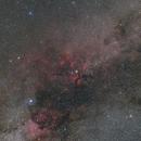 Cygnus widefield,                                Michael Kohl
