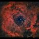 NGC 2237 - Rosette Nebula ,                                Kenneth Sneis