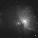 M42 Orion Nebula,                                Jeff Miller