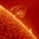 Sun, Prominence 25.8.19 (Switzerland),                                Luk