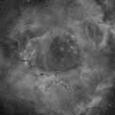 NGC2244 in Ha,                                Benjamin Lefevre